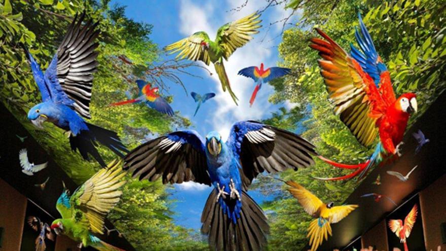 Imagen promocional de Loro Parque