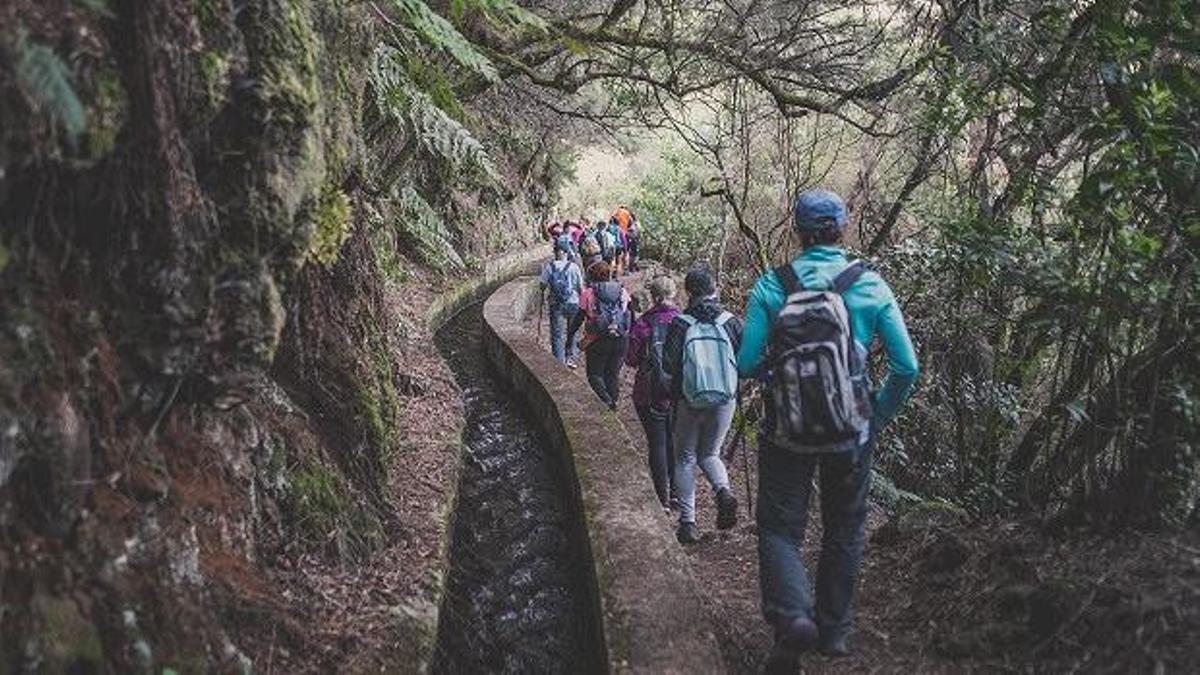 Un grupo de senderistas en La Palma.