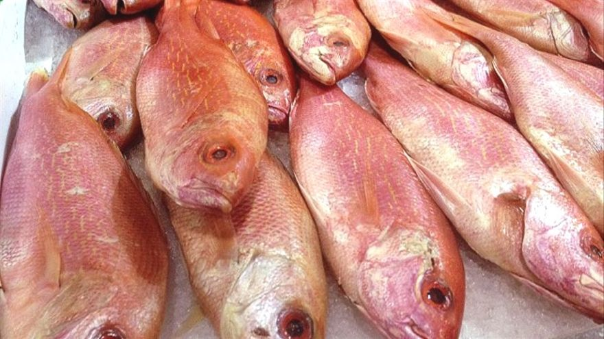 Diez sencillos consejos para comer pescado evitando los metales pesados