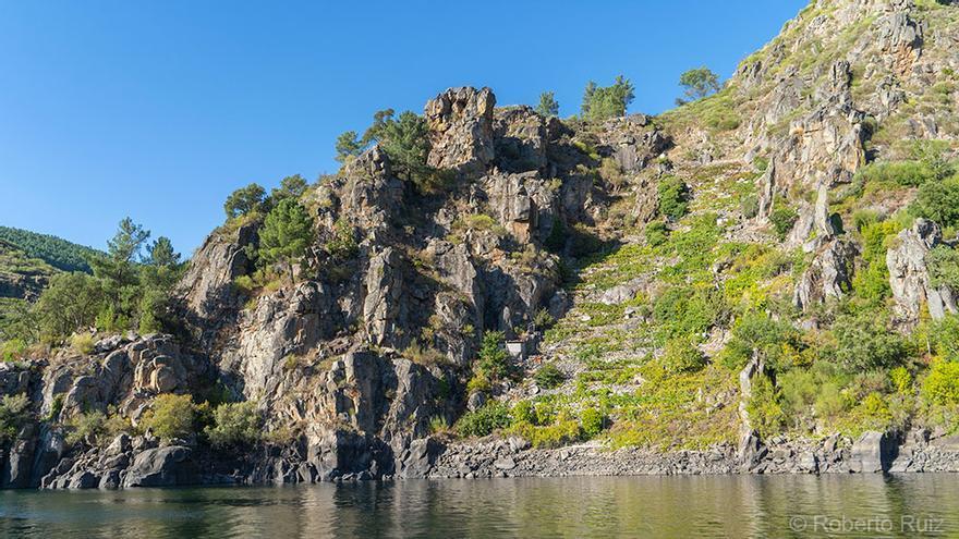 Travesía en barco por el río Sil, en la Ribeira Sacra.