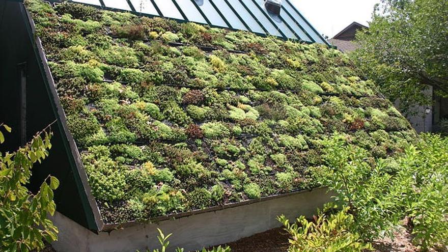 Cubierta vegetal de un edificio.