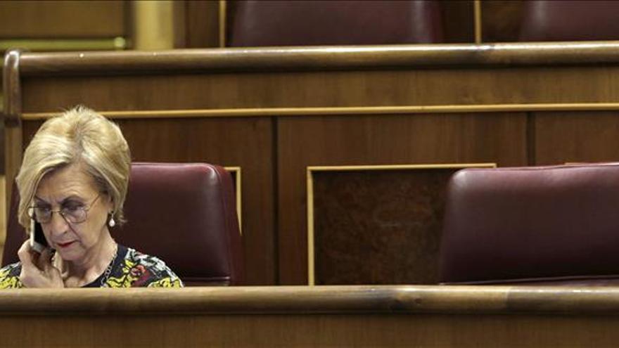 Rosa Díez (UPyD) dice que el Tribunal Constitucional ha puesto las cosas en su sitio