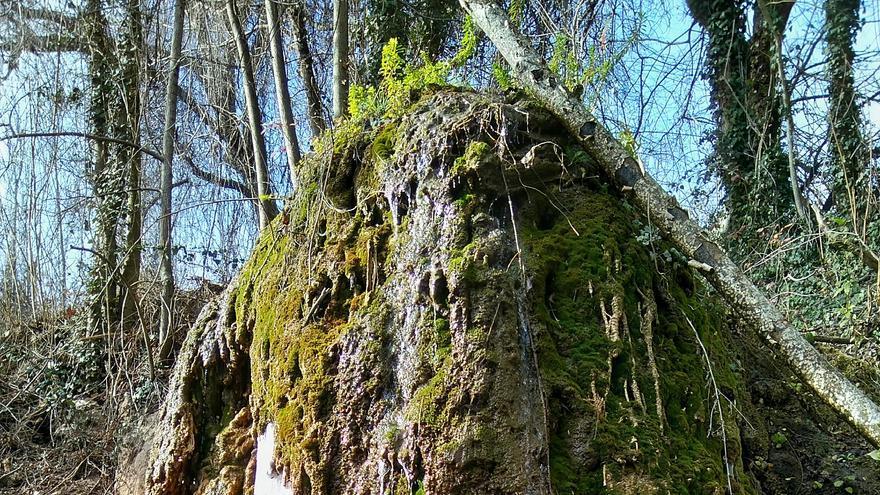 Rocas protegidas que crean paisajes
