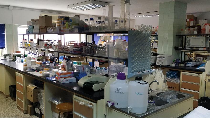 Laboratorio donde trabaja el equipo de la Universidad de La Laguna.