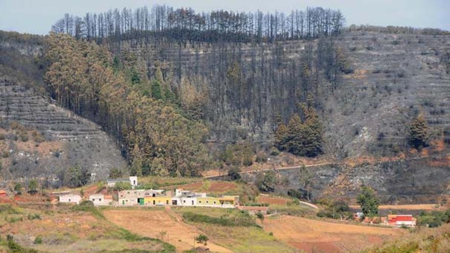 Del incendio en Tenerife #11