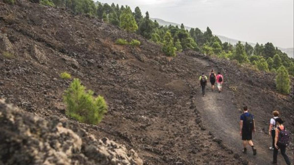 Senderistas en la Ruta de los Volcanes.