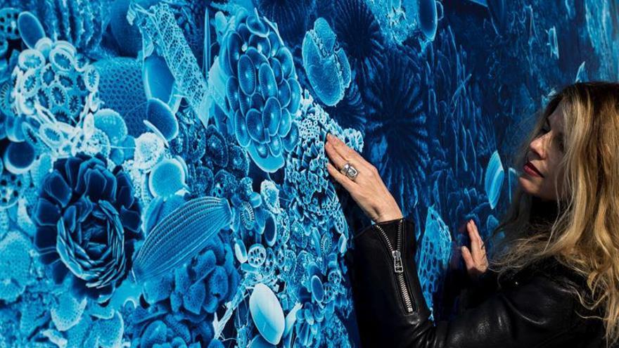 Un mural de arte científico reivindica el estudio de los microorganismos marinos