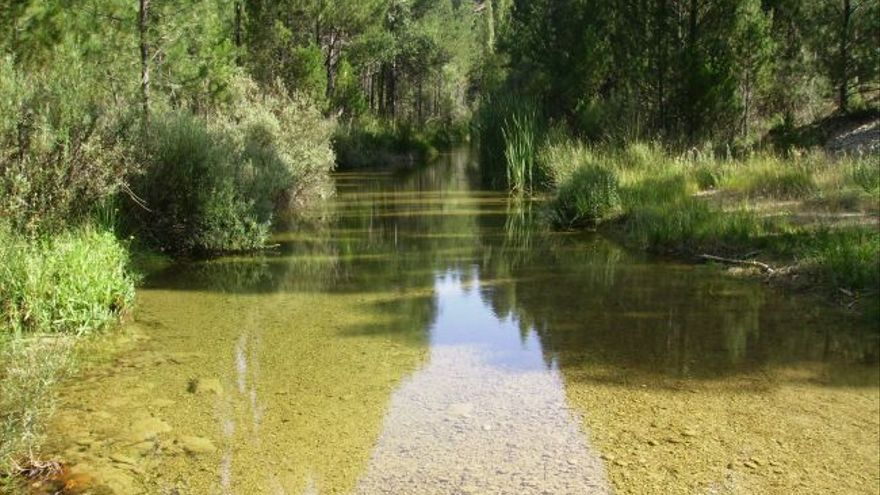 Foto: Confederación Hidrográfica del Segura