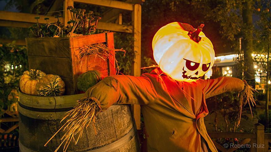 Halloween, espantapajaros calabaza