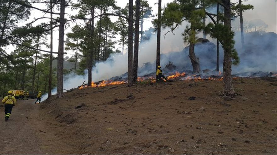 Incendio en Gran Canaria.