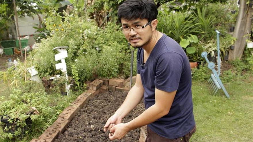 La agricultura urbana se abre paso en la jungla de hormigón de Bangkok