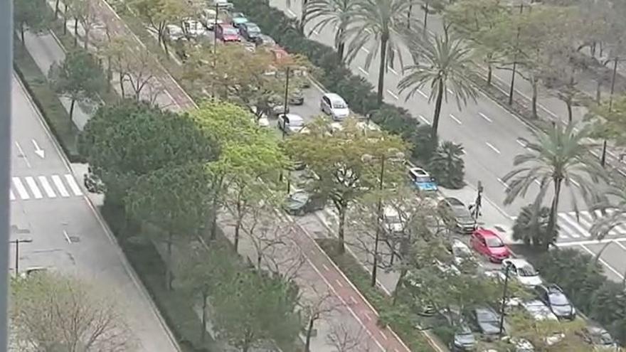 Coches que escapan por el jardín de la Avenida Cortes Valencianas.