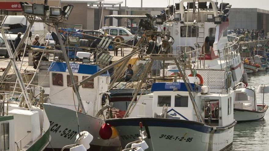 La Eurocámara aprueba un nuevo acuerdo pesquero con Marruecos