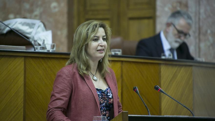 """Lizárraga deja su escaño en el Parlamento por """"distanciamiento"""" con posiciones de la dirección andaluza de Podemos"""