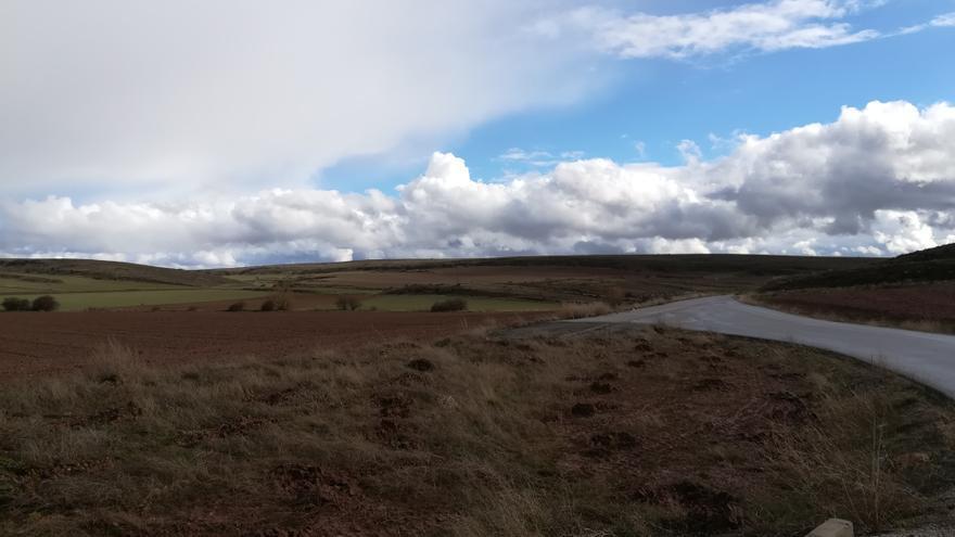 Terrenos en los que se asentará la macrogranja porcina, cercano a Castellar de la Muela