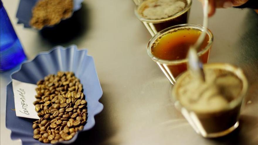 El consumo de café y la cafeína no tienen efectos nocivos para salud, según expertos