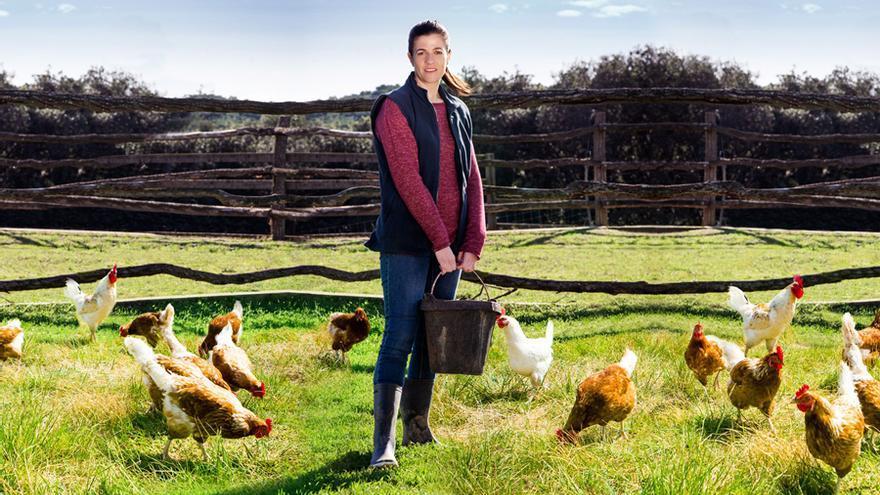 Para evaluar el bienestar de los animales, se tienen en cuenta cuatro variables: alimentación, alojamiento, salud y trato.