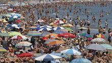 Dos playas de Valencia, reabiertas al baño tras avistarse ayer tres peces raya
