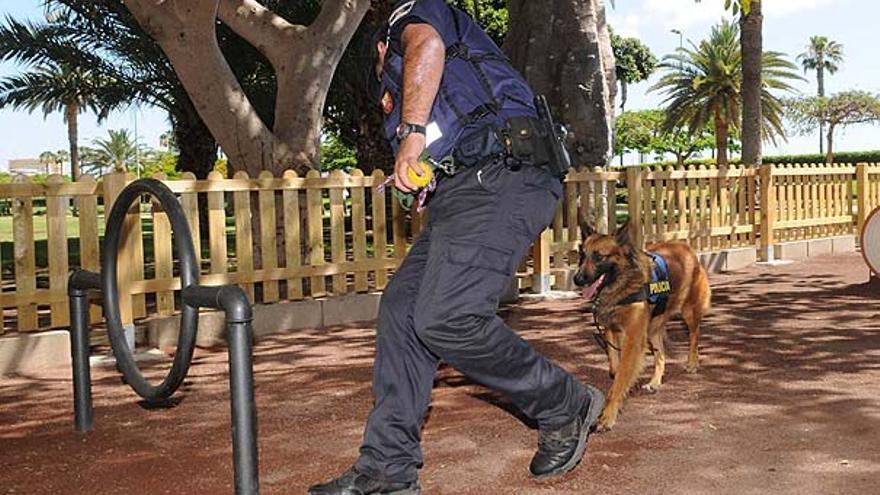 Del nuevo parque para perros #10