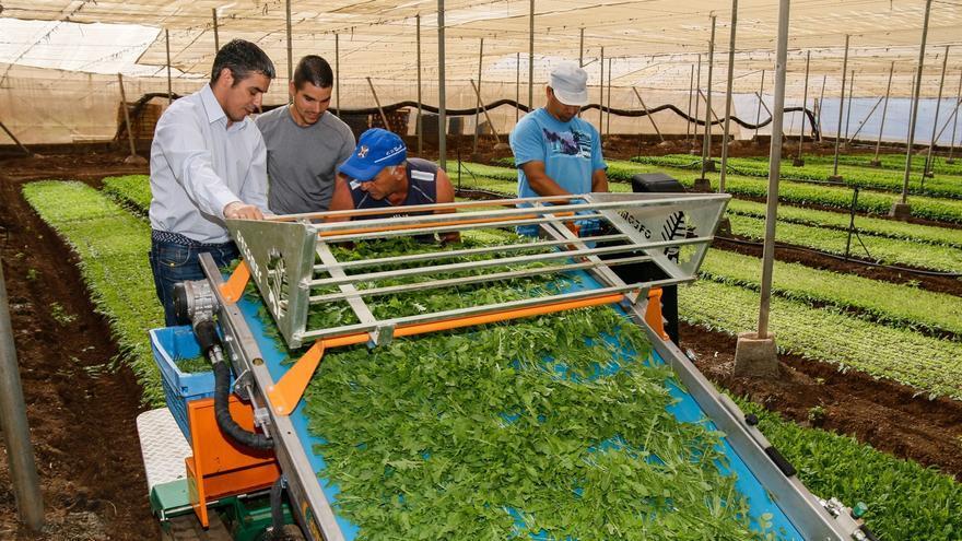 Narvay Quintero, en la visita a una finca agrícola, en una imagen de archivo