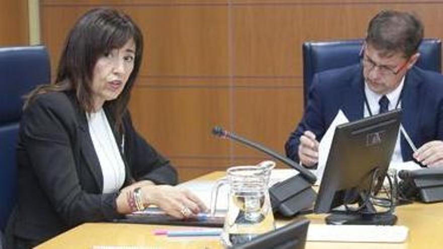 Olatz Garamendi, en una comparecencia en el Parlamento Vasco