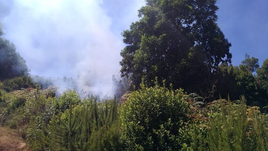 Conato de incendio en  el municipio de Garafía
