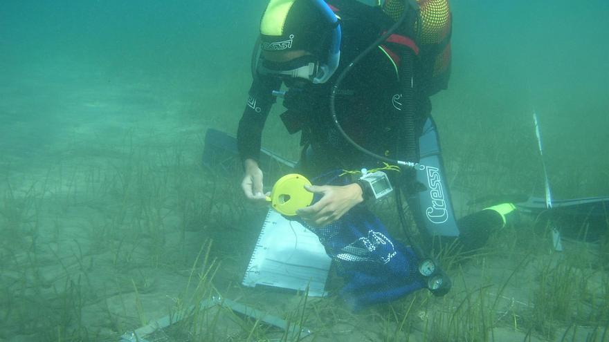 Fernando Espino realizando sus investigaciones bajo el agua