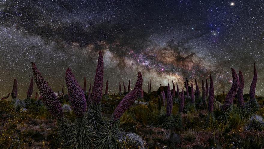 ¡Perdido! de Giovanni Tessicini ha sido la ganadora  en el apartado de 'Paisaje astronómico desde La Palma'.