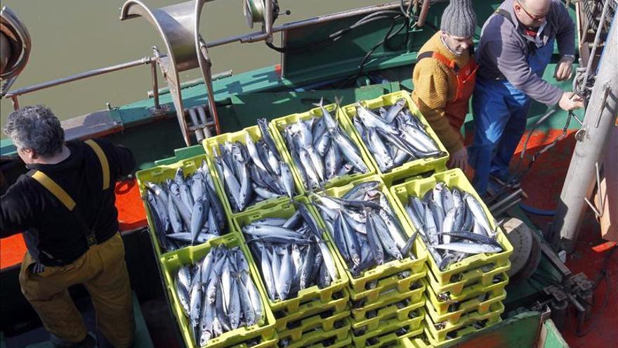 Bruselas sigue oponiéndose a sancionar a Islandia por la pesca de la caballa