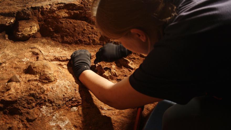 """""""Estamos conociendo mejor el contexto ecológico en el que vivían los neandertales de la cueva de los Casares"""""""