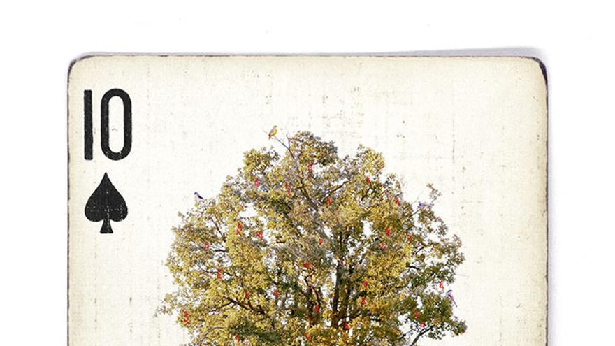 Segundo premio de la IV Edición del Concurso de Fotografía Upcycling./ Foto: Ecoembes