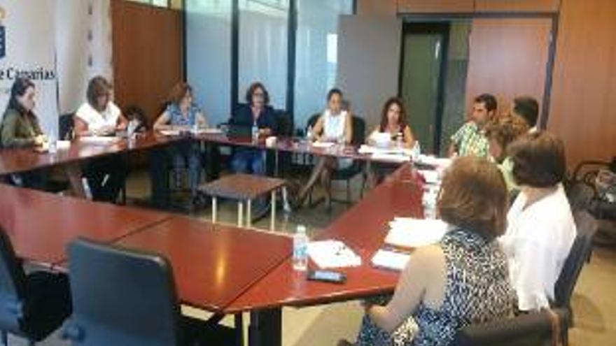 Reunión de la directora del Instituto Canario de Igualdad (ICI), Claudina Morales, con representantes de Igualdad de los cabildos insulares.