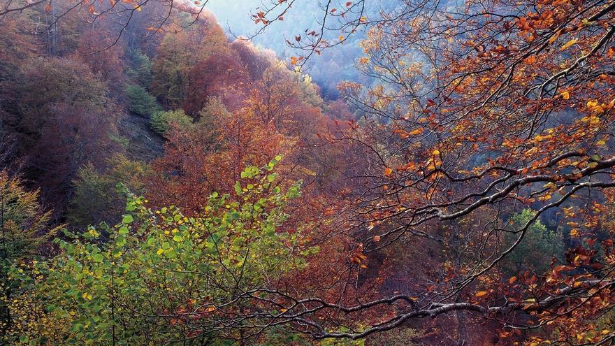 El otoño se prevé cálido y con precipitaciones normales tras un verano muy cálido y seco en Cantabria