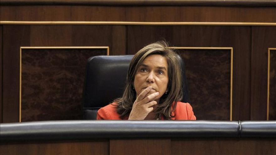 La ministra de Sanidad, Servicios Sociales e Igualdad, Ana Mato. / Efe