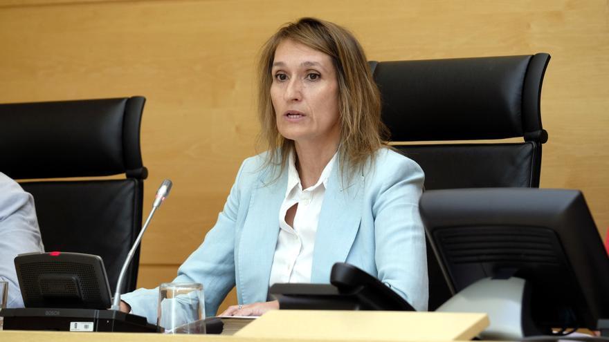 La consejera de Educación de la Junta de Castilla y León, Rocío Lucas.