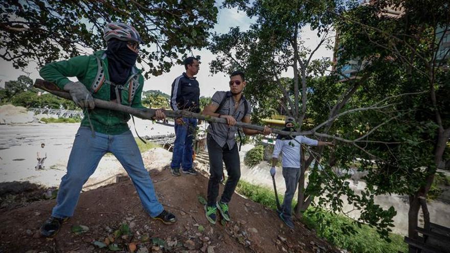La Fiscalía venezolana investiga la tala de 3.000 árboles durante las protestas