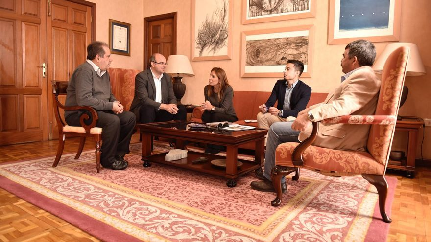 De izquierda a derecha, José Luis Perestelo, vicepresidente del Cabildo; Anselmo Pestana, presidente;  Ainara Irigoyen, delegada de Red Eléctrica de España (REE) en Canarias; otro directivo de REE, y Juan Manuel González, consejero insular de Medio Ambiente.