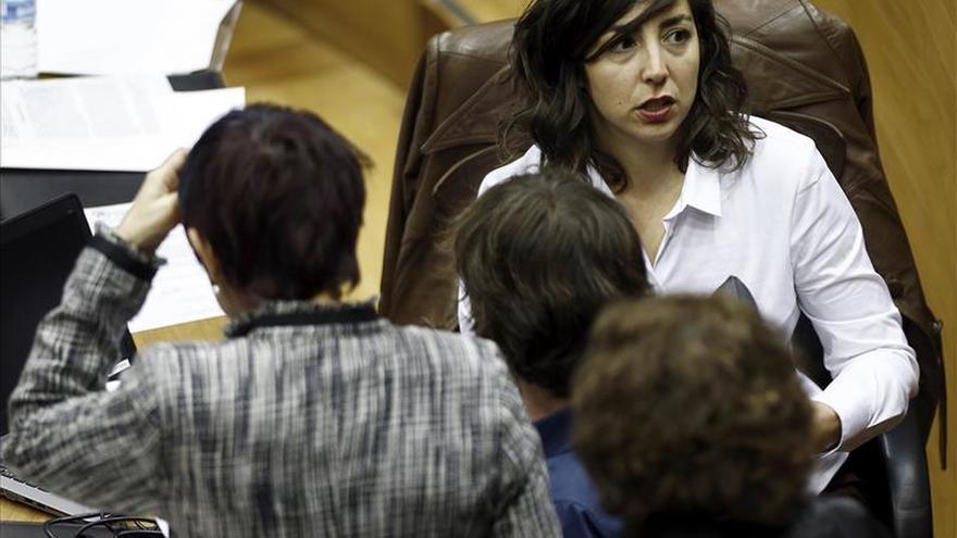 Navarra aprueba tramitar una ley de consulta sobre el derecho a decidir