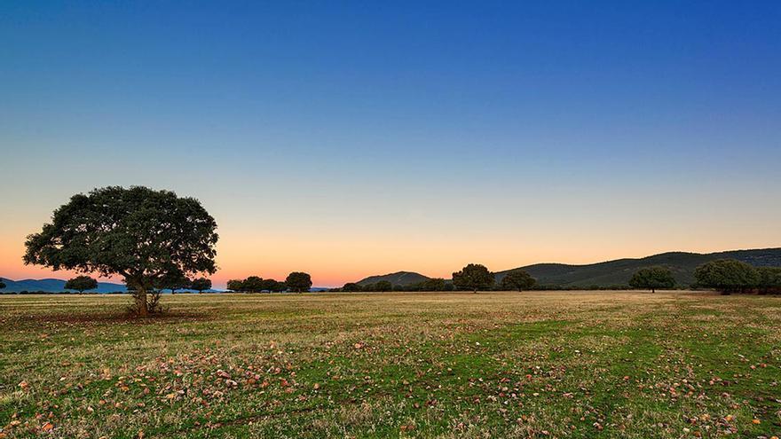 Ecologistas en Acción reclama incorporar el derecho al medio ambiente al Estatuto de Castilla-La Mancha