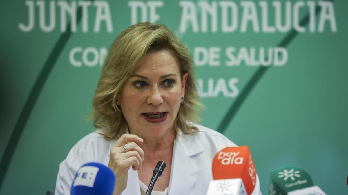 La portavoz del Grupo Asesor de Seguimiento del Coronavirus en Andalucía