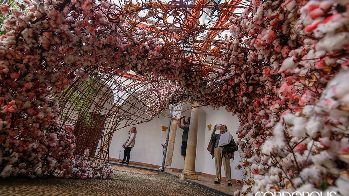 Instalación ganadora del primer premio de Flora 2019