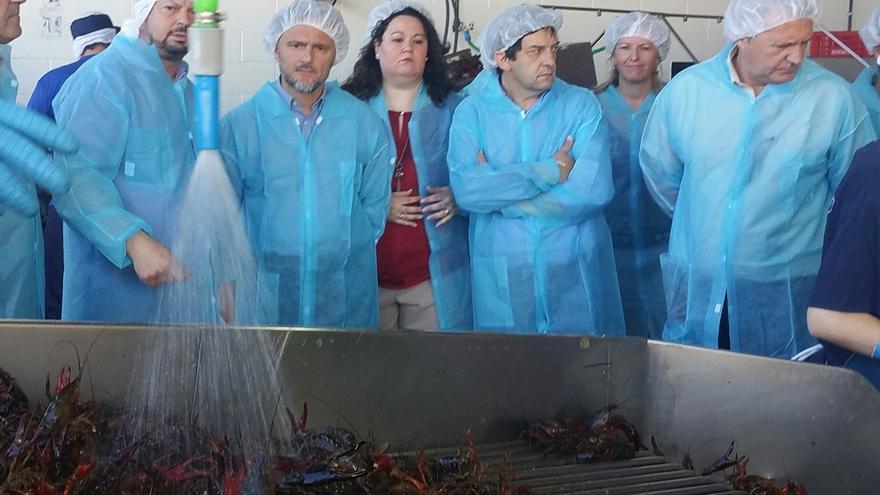 Junta anuncia que en julio se publicará la orden que permitirá la extracción del cangrejo rojo y su control