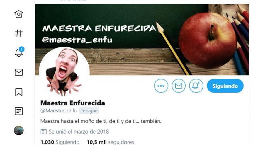 El perfil de la maestra enfurecida cuenta con más de 10.000 seguidores