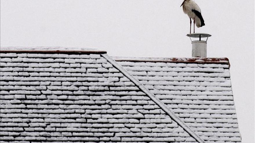Sólo Canarias y Ceuta se escapan de los efectos del temporal de nieve y frío