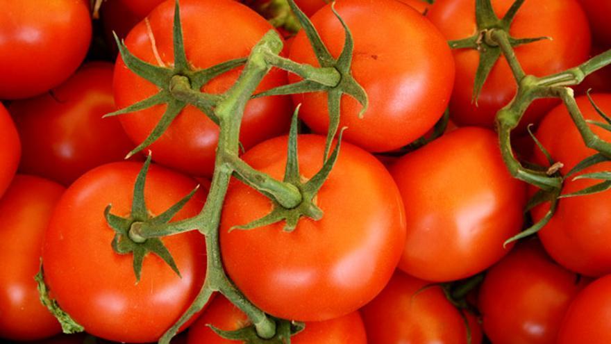 ¿Está justificada la mala imagen que la ciudadanía tiene sobre los productos fitosanitarios?