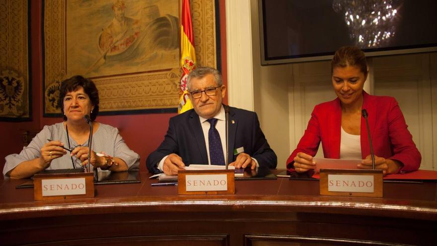 Ángel Felpeto en el Senado / JCCM