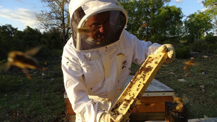 La miel alcarreña Nectarius, premiada en los Great Taste 2018, los 'Oscar' de la alimentación