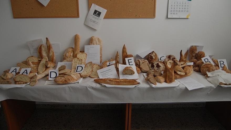 Panes que han participado en el I Concurso organizado en Albacete.