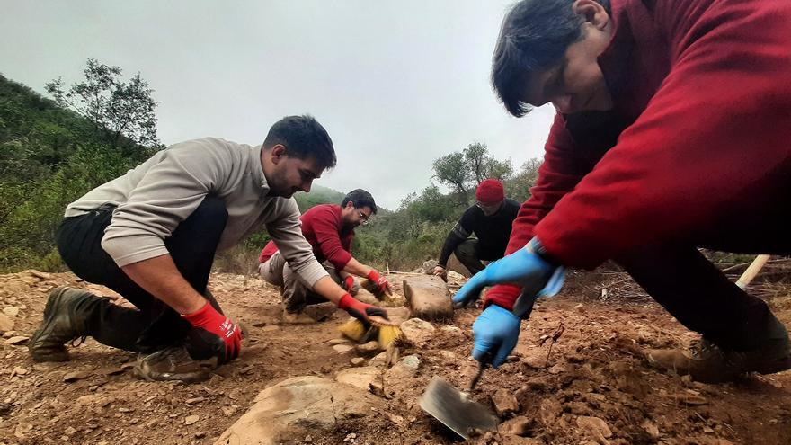 Equipo arqueológico en la búsqueda de la fosa de El Cojillo en Berrocal (Huelva). |