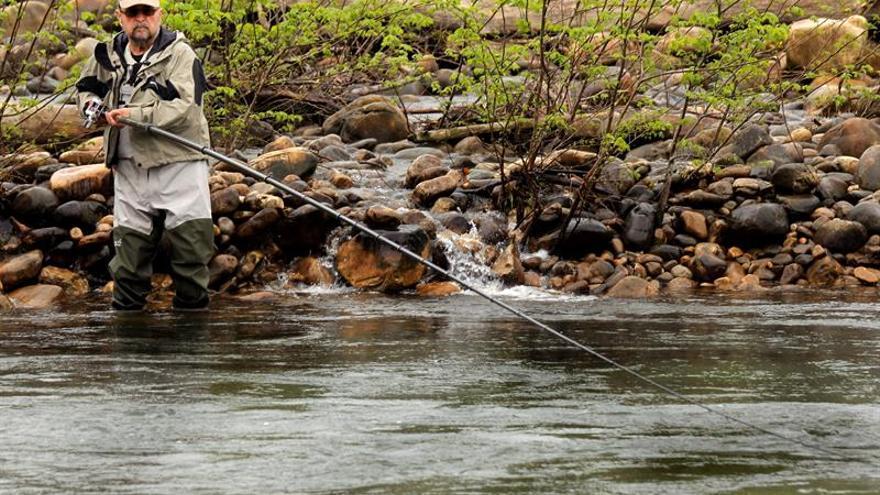 """El río Eo da el """"campanu"""" del 2017, un salmón de 5,8 kilos"""